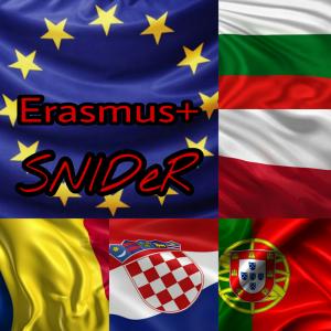 Logos proposal
